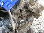 muddy Yamaha