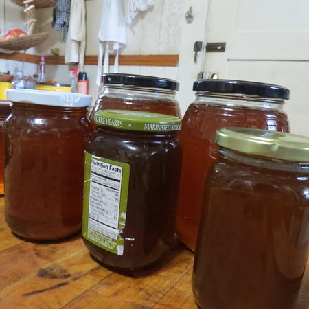 my20first20honey20harvest-m