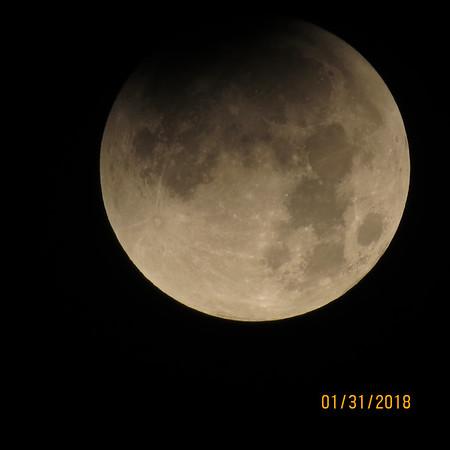 Sylvia Weir Lunar Eclipse